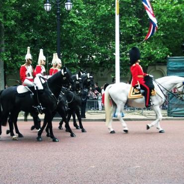 Queens Birthday London, June 13 2015 Image 3